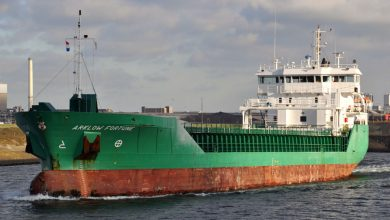 Photo of MV Arklow Fortune, Past and Present
