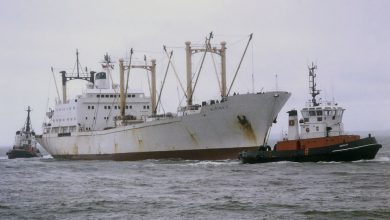 Photo of MV Aegean Reefer, Cargo from the Past
