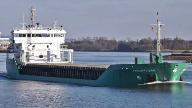 Photo of MV Arklow Fern – Past and Present