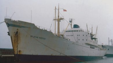 Photo of MV Malayan Reefer – Cargo from the Past